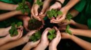 inclusion by Organic farming